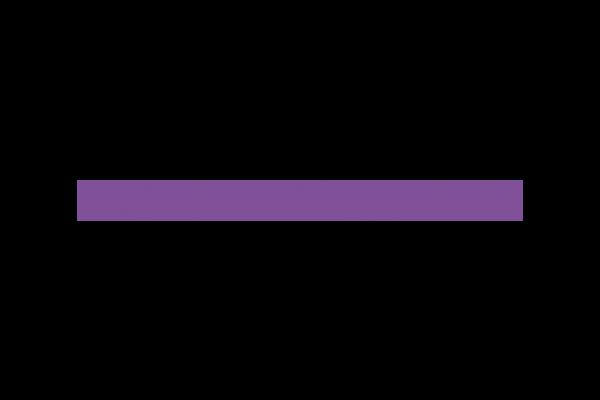 Bizcounsel